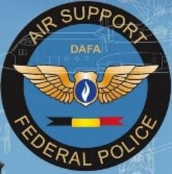 Dafa_badge